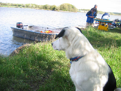 Bob was transfixed by the boats