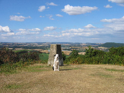 Man's best friend - yes I love trigpoints (only joking Bob)